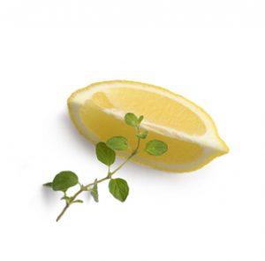 לימון וטימין